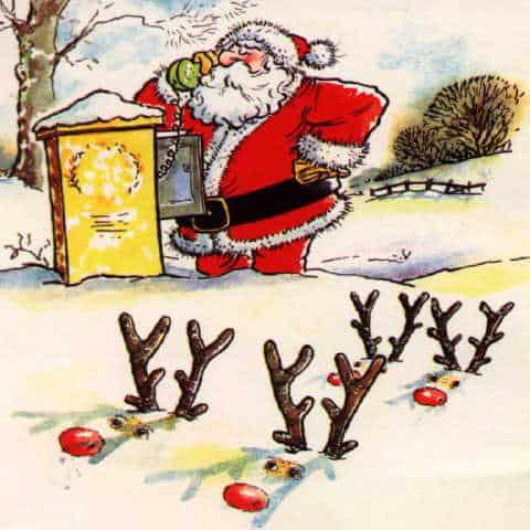 Sjove julebilleder - Jul For Alle