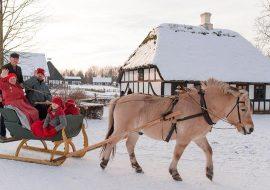 Jul hos Frilandsmuseet Hjerl Hede
